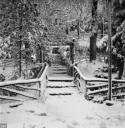 nevicata-dic807.jpg