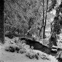 nevicata-dic808.jpg