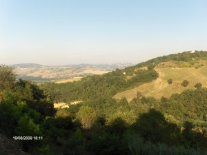 Colline Urbino